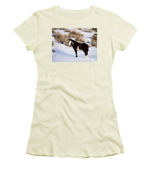 Wild Horse Stallion Women's T-Shirt (Athletic Fit)