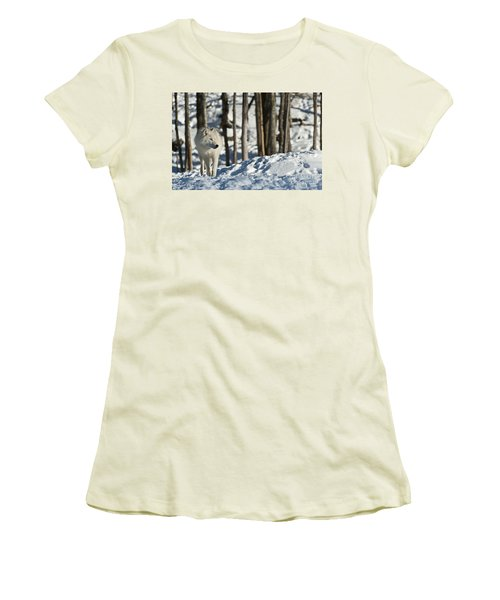 Women's T-Shirt (Junior Cut) featuring the photograph Winter Arctic Wolf by Wolves Only