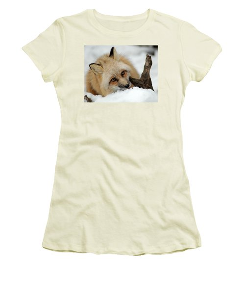 Winter Fox 2 Women's T-Shirt (Junior Cut) by Richard Bryce and Family