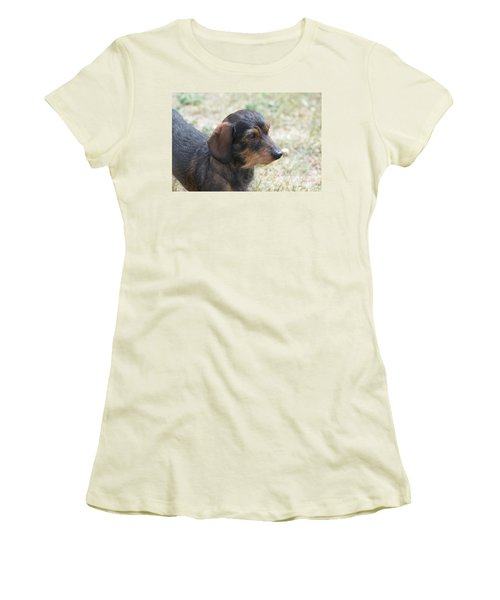 Wire Haired Daschund Women's T-Shirt (Athletic Fit)