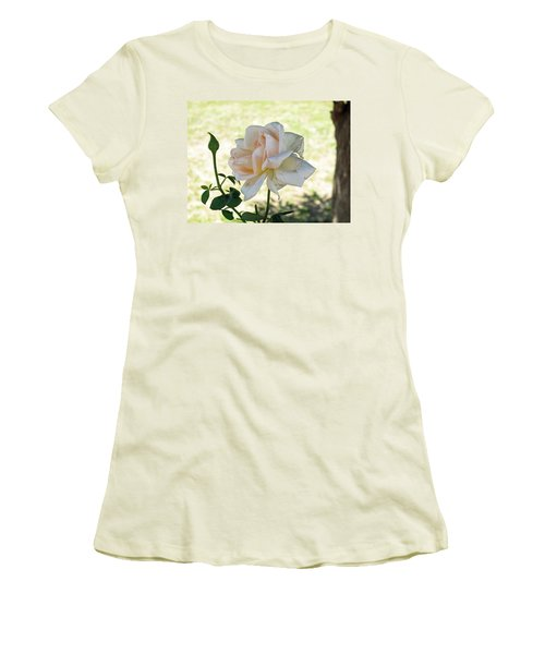 Women's T-Shirt (Junior Cut) featuring the photograph A Beautiful White And Light Pink Rose Along With A Bud by Ashish Agarwal