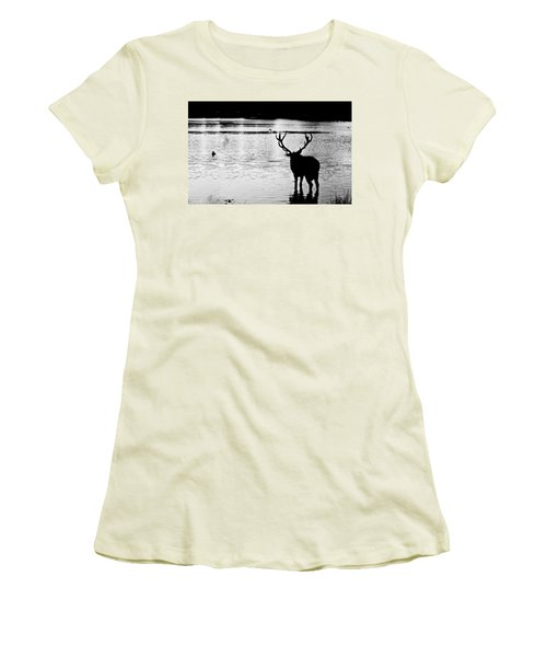 Women's T-Shirt (Junior Cut) featuring the photograph Cooling Off Deer by Maj Seda