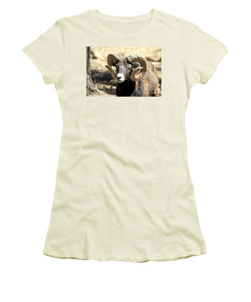 European Big Horn - Mouflon Ram Women's T-Shirt (Athletic Fit)
