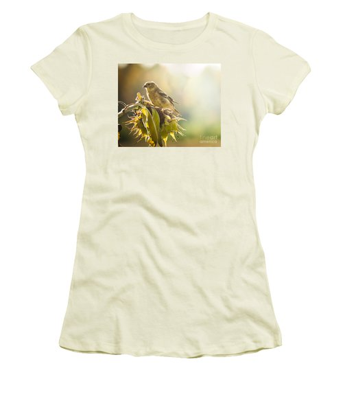 Women's T-Shirt (Junior Cut) featuring the photograph Finch Aglow by Cheryl Baxter