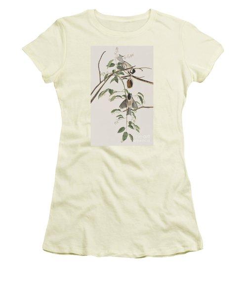 Black Capped Titmouse Women's T-Shirt (Athletic Fit)