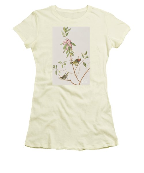 Ruby Crowned Wren Women's T-Shirt (Junior Cut) by John James Audubon