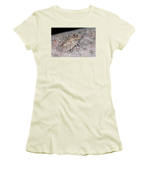Women's T-Shirt (Junior Cut) featuring the photograph Stink Bug by Breck Bartholomew