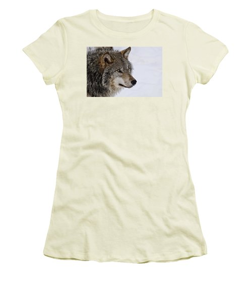 Women's T-Shirt (Junior Cut) featuring the photograph Timber Wolf by Michael Cummings