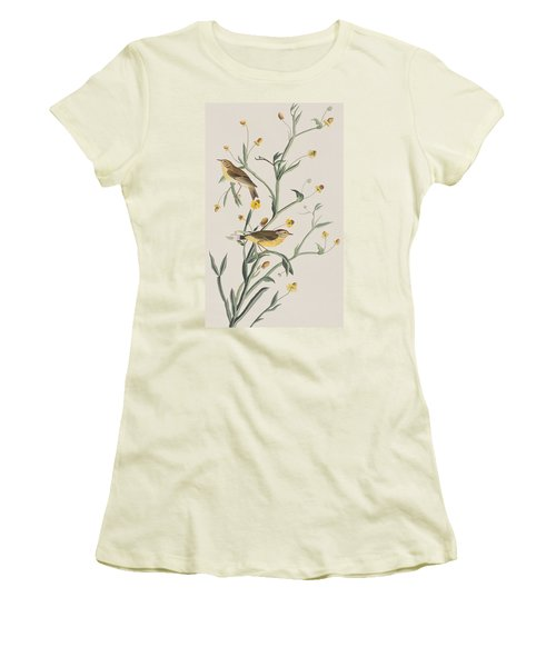 Yellow Red-poll Warbler Women's T-Shirt (Athletic Fit)