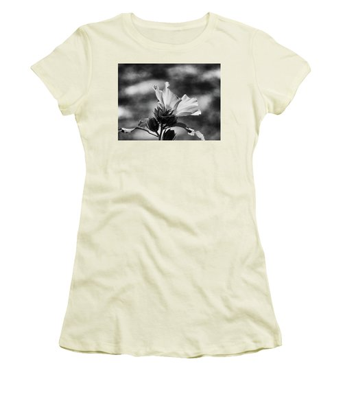 Seasons Women's T-Shirt (Junior Cut) by Allen Beilschmidt