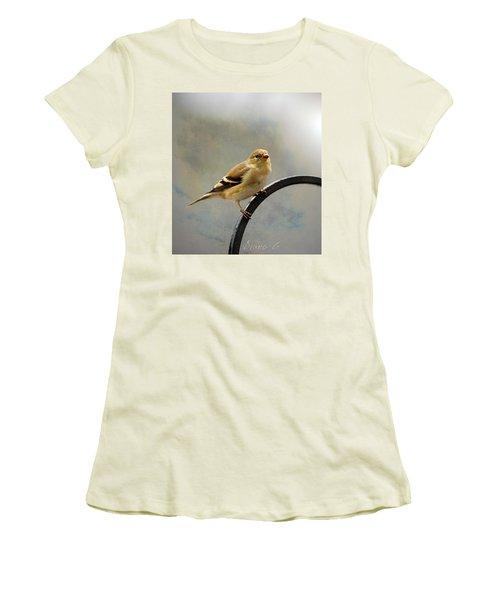 American Goldfinch Women's T-Shirt (Junior Cut) by Diane Giurco