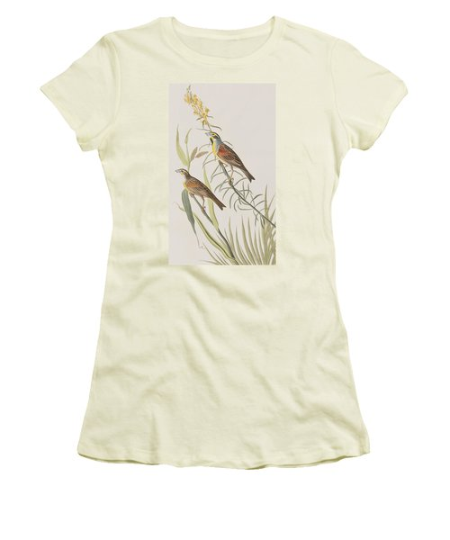 Black-throated Bunting Women's T-Shirt (Athletic Fit)