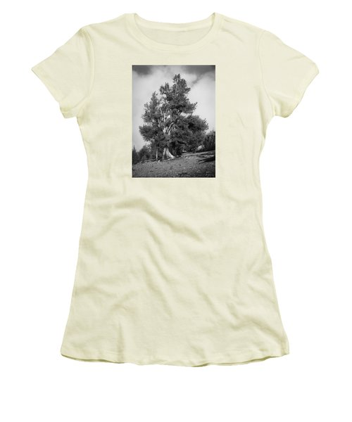 Bristlecone Pine Women's T-Shirt (Athletic Fit)