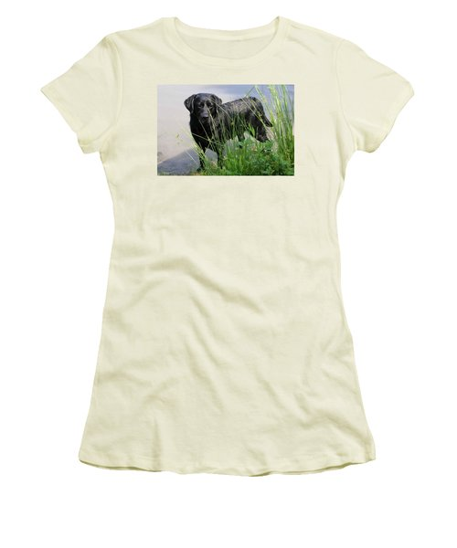 Women's T-Shirt (Junior Cut) featuring the photograph Chicago 0121 by Guy Whiteley