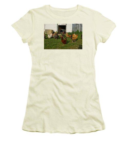 Chicken Scratch Women's T-Shirt (Junior Cut) by Steven Clipperton