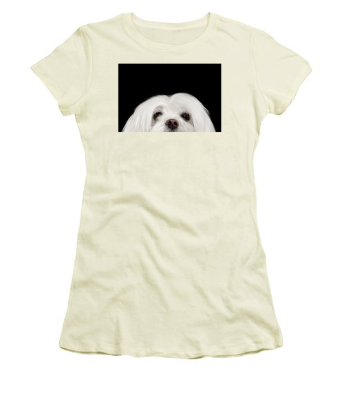 Closeup Nosey White Maltese Dog Looking In Camera Isolated On Black Background Women's T-Shirt (Athletic Fit)