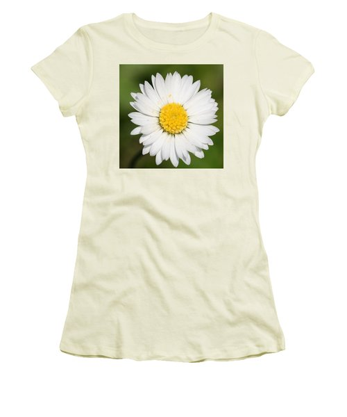 Closeup Of A Beautiful Yellow And White Daisy Flower Women's T-Shirt (Athletic Fit)