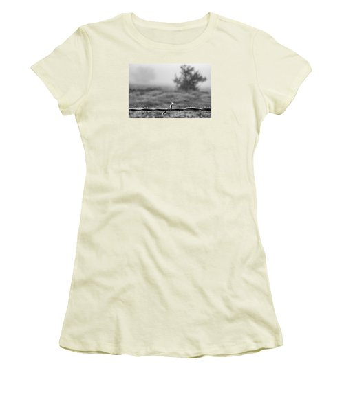 Cold Frosty Morning Women's T-Shirt (Junior Cut) by Monte Stevens