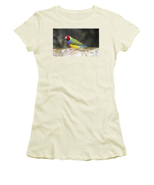 Colorful Lady Gulian Finch  Women's T-Shirt (Athletic Fit)