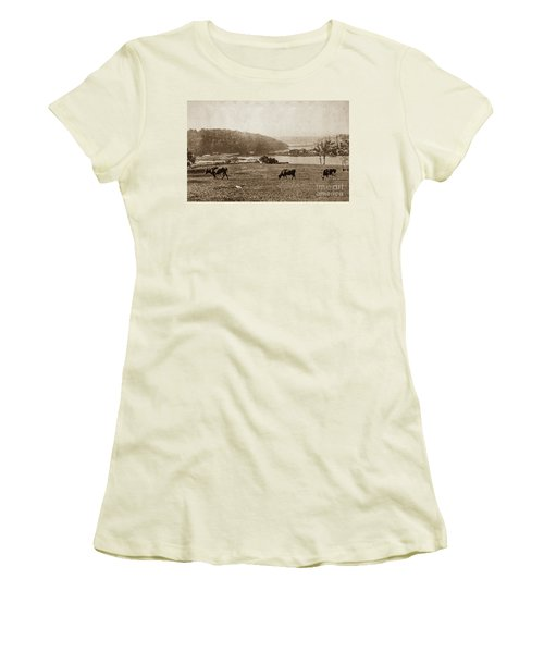 Women's T-Shirt (Athletic Fit) featuring the photograph Cows On Baker Field by Cole Thompson