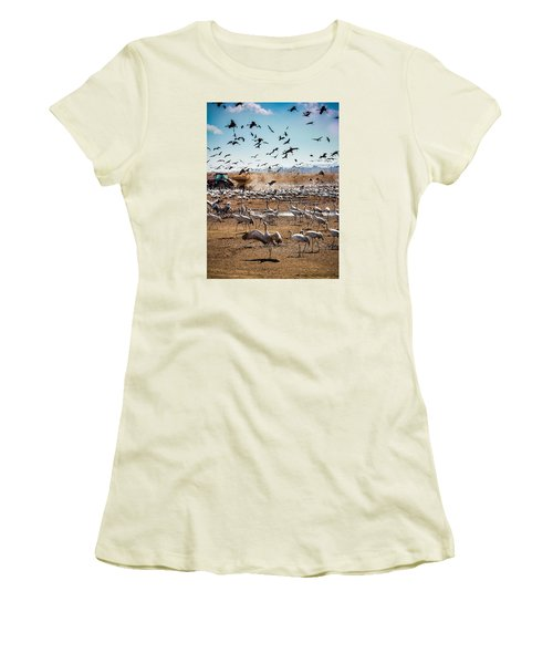 Cranes Feeding Women's T-Shirt (Athletic Fit)