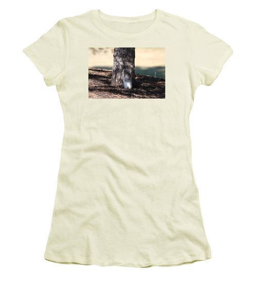 Women's T-Shirt (Athletic Fit) featuring the photograph Cute Squirrel by Vadim Levin