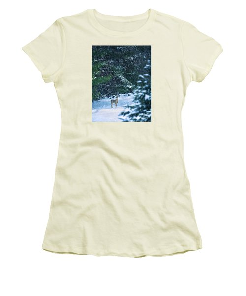 Deer In A Snowy Glade Women's T-Shirt (Athletic Fit)
