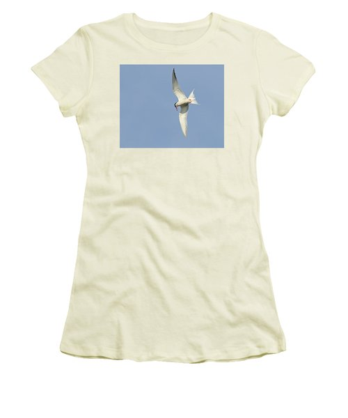 Women's T-Shirt (Junior Cut) featuring the photograph Dive by Tony Beck