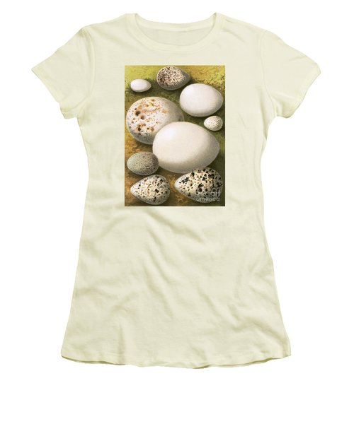 Eggs Women's T-Shirt (Athletic Fit)