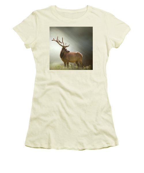 Women's T-Shirt (Junior Cut) featuring the photograph Elk In Suns Rays by David and Carol Kelly