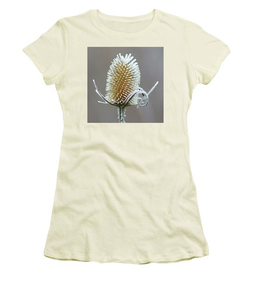 Women's T-Shirt (Junior Cut) featuring the photograph Frosted Teasel by Nikolyn McDonald