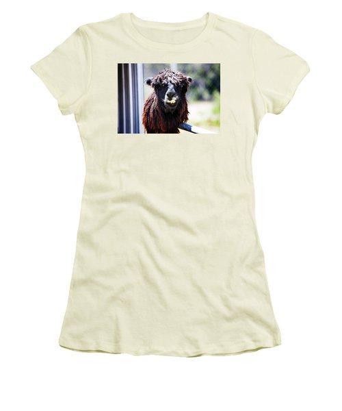 Geofery Women's T-Shirt (Junior Cut) by Anthony Jones