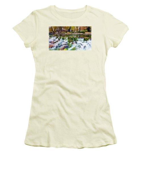 Giant Springs 1 Women's T-Shirt (Junior Cut) by Susan Kinney