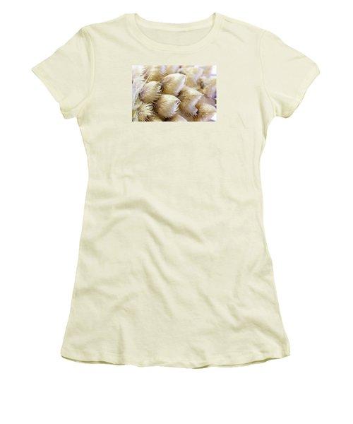 Globe Cornflower Seed Heads - Macro Women's T-Shirt (Junior Cut) by Sandra Foster