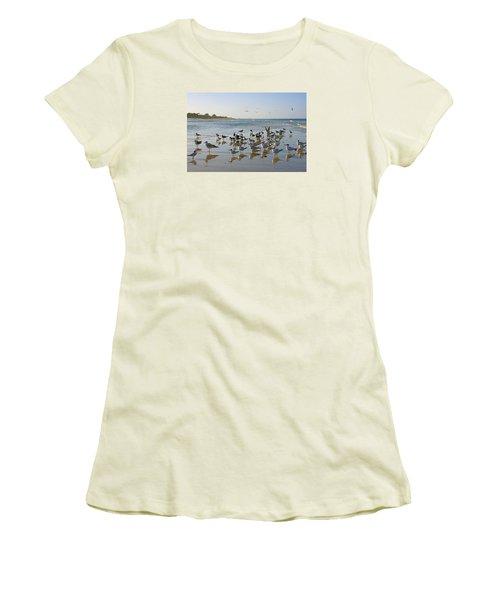 Women's T-Shirt (Junior Cut) featuring the photograph Gulls And Terns On The Sanbar At Lowdermilk Park Beach by Robb Stan