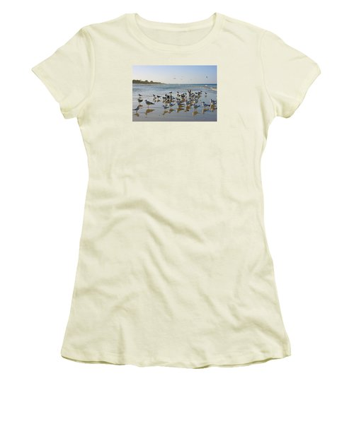 Gulls And Terns On The Sanbar At Lowdermilk Park Beach Women's T-Shirt (Athletic Fit)
