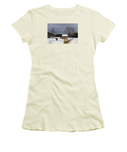 Horses In Snow Women's T-Shirt (Athletic Fit)