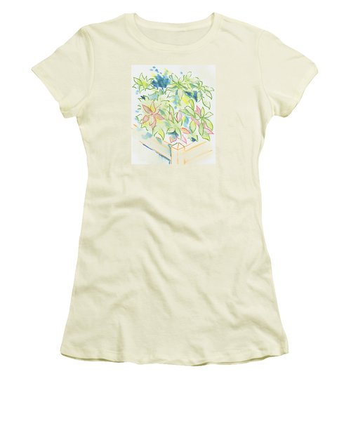Hydrangea Plant Growing Out Of A Square Wooden Planter Women's T-Shirt (Athletic Fit)