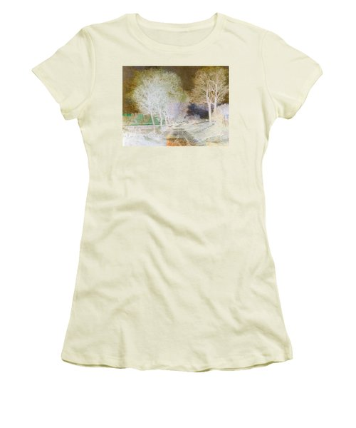 Inv Blend 4 Sisley Women's T-Shirt (Junior Cut) by David Bridburg