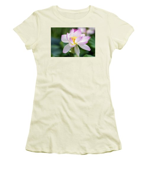 Lotus Women's T-Shirt (Junior Cut) by Edward Kreis