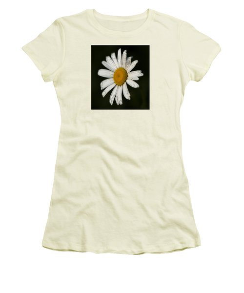 Morning Daisy Women's T-Shirt (Junior Cut) by Dan Hefle