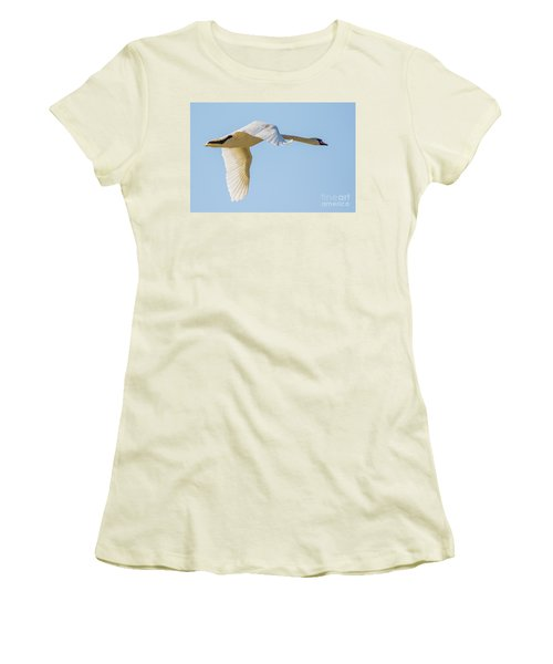 Mute Swan Women's T-Shirt (Junior Cut) by Jivko Nakev