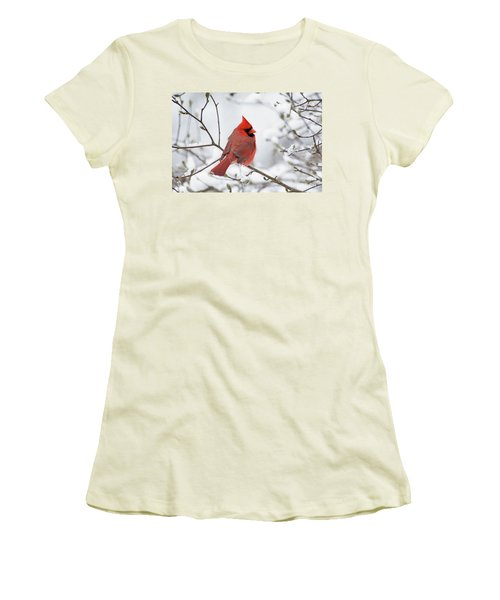 Northern Cardinal - D001540 Women's T-Shirt (Athletic Fit)