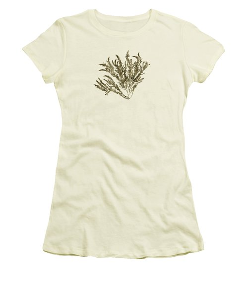Women's T-Shirt (Junior Cut) featuring the mixed media Ocean Seaweed Plant Art Ptilota Sericea Square by Christina Rollo
