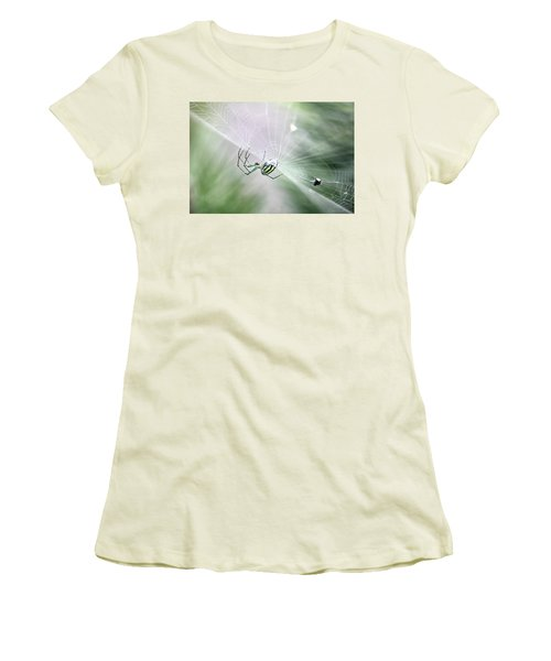 Women's T-Shirt (Athletic Fit) featuring the photograph Orchard Orbweaver Spider  by Trina Ansel