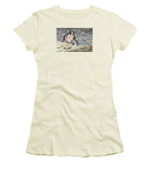 Peregrine Falcon 2 Women's T-Shirt (Athletic Fit)