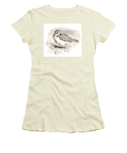 Piping Plover Women's T-Shirt (Athletic Fit)