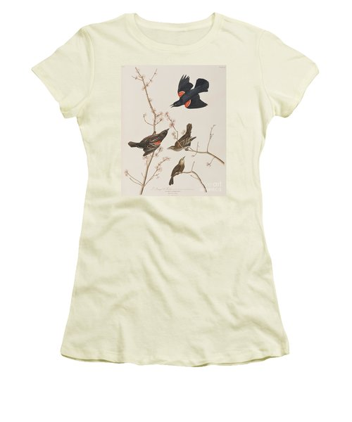 Red Winged Starling Or Marsh Blackbird Women's T-Shirt (Athletic Fit)