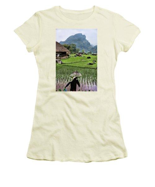 Rice Fields Women's T-Shirt (Junior Cut) by Chuck Kuhn