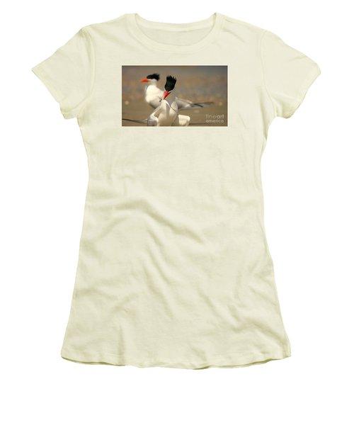 Royal Tern Catch Women's T-Shirt (Athletic Fit)
